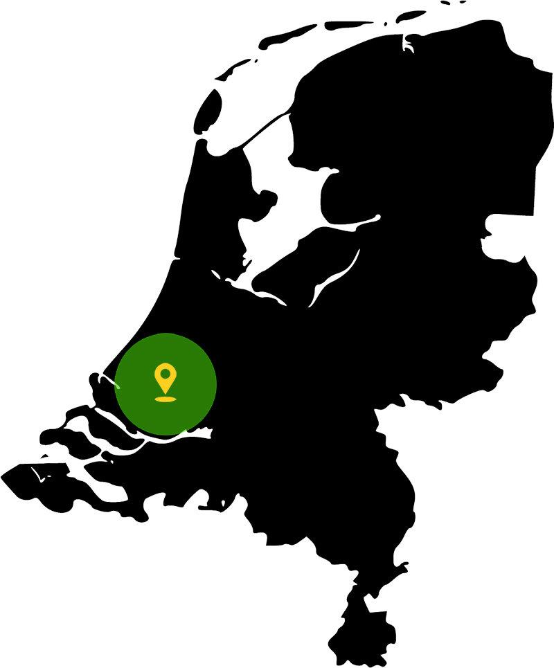Autorijschool Be Free Rotterdam en omgeving